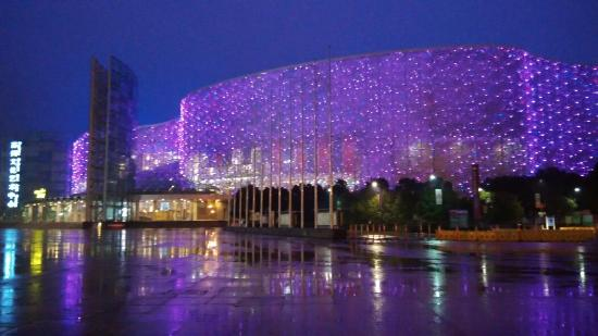 Suzhou Science and Cultural Arts Center: 晚上