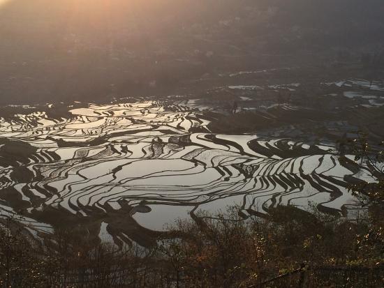 Yuanyang County, China: 元阳梯田的日出