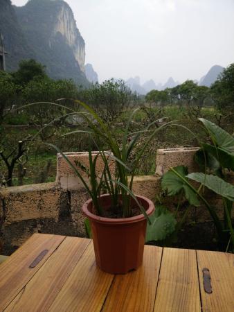 Yangshuo Moon Resort: 从贵阳带来的兰花