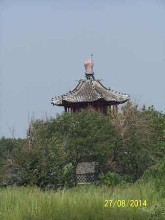 Tianjin Wenchang Pavilion: 绿树掩映文昌阁