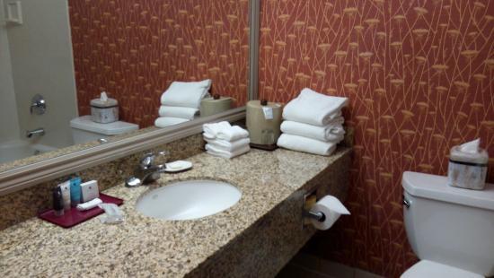 Crowne Plaza Silicon Valley North-Union City: 老式的浴室