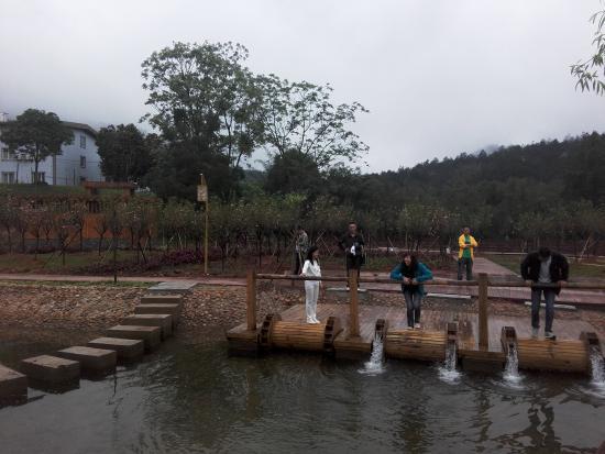 Bazhai Valley: IMG_20150325_103219