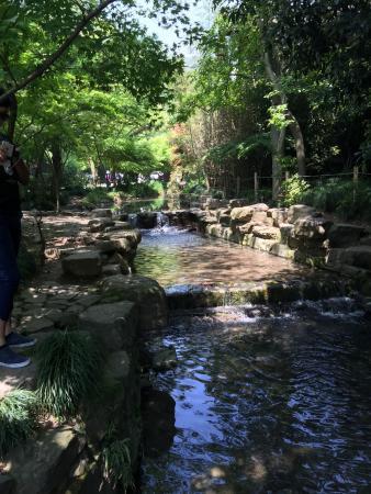 Jiuxi 18 Stream: 2015-04-22