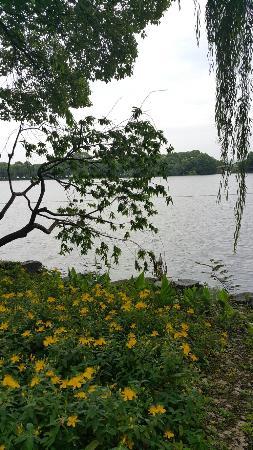 依湖而建  曲径悠然  既能一览西湖美景  又摆脱人声鼎沸的街景  休闲放松  的好去处