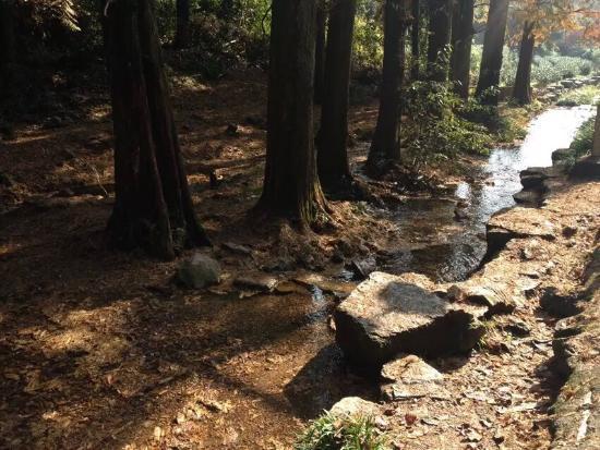 Jiuxi 18 Stream: 九溪十八涧