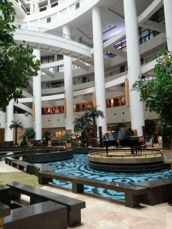Shandong Hotel: 大堂里的水池