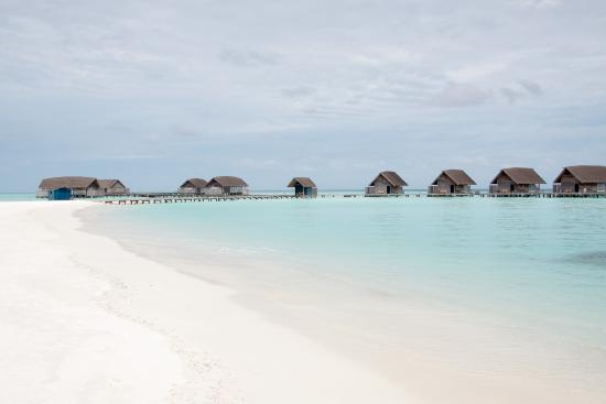 Cocoa Island by COMO: 海滩