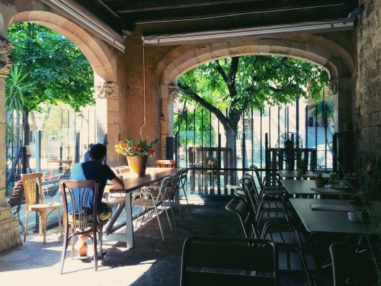 El jardin picture of el jardin barcelona tripadvisor for Barcelona jardin