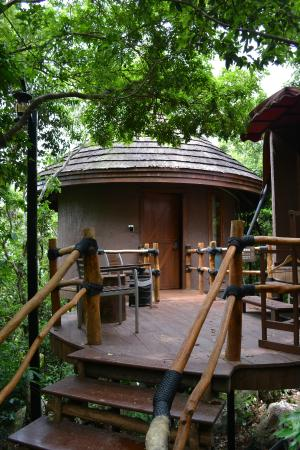 Earthly Paradise Bird Nest Resort: 集结地02