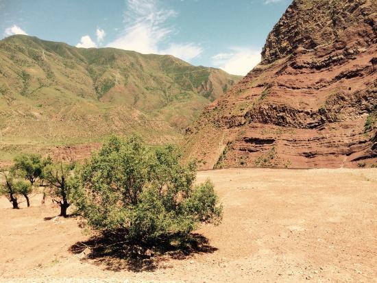 Qamdo County, China: 这才是卡若遗址的现状。