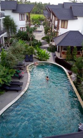 Bakung Ubud Resort and Villa: 泳池