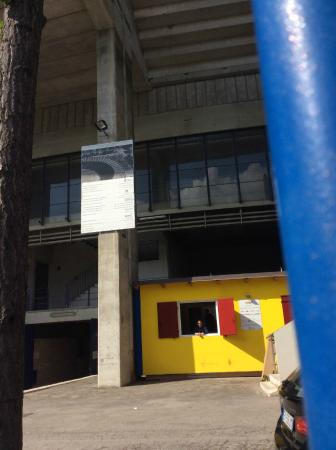 Stadio Marcantonio Bentegodi: 球场外观