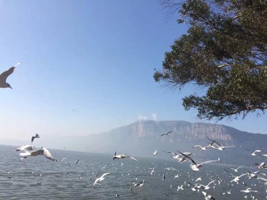 Dian Lake (Dian Chi): 滇池旁边