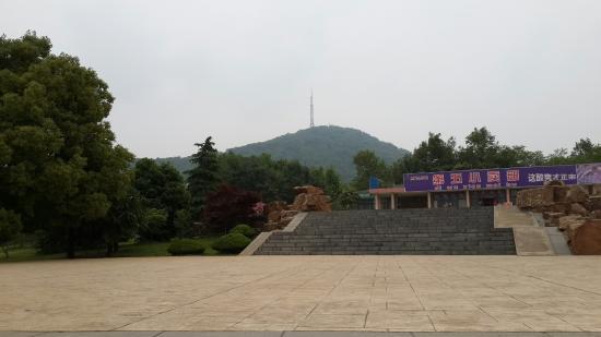 Shushan Forest Park