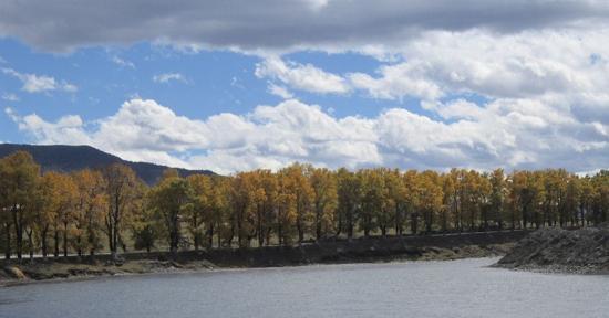 Xinduqiao Town: 新都桥的树木与湖