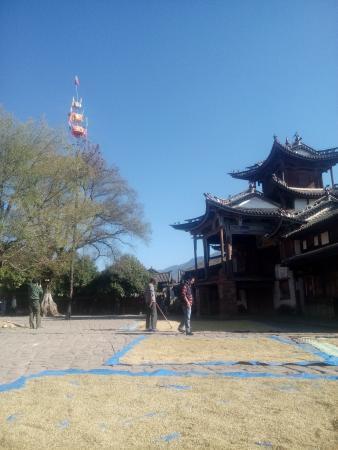 Yunnan Shaxi Ancient Town : 收获的沙溪