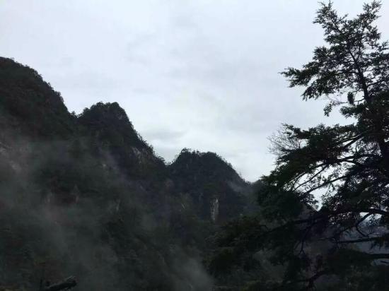 Da'ming Mountain: 雾中大明山