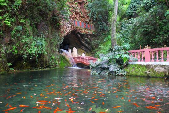 Miyi Longtan Limestone Cave: 入口