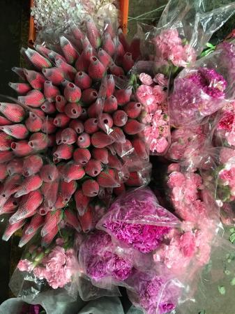 Chenggong County, China: 斗南花卉市场