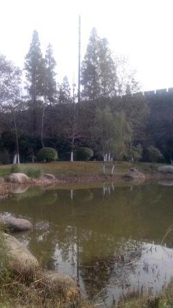 Xuanwu lake: 玄武湖边