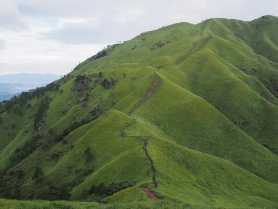 Wugong Mountain (Wu-kung) : 满眼绿色