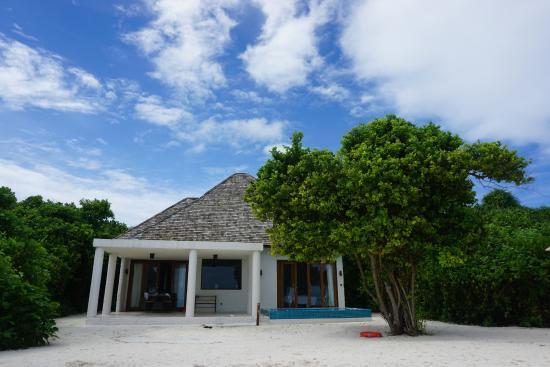 Dhonakulhi Island: 沙屋后院