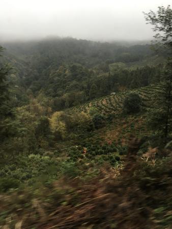 Dongzhi County, Cina: 不太好玩 古徽道台阶太高太陡,路又窄,爬的太累了!!山里有个大山村,就是进去村子里转一圈,没什么可看的。我们住的是仙寓山度假村,比较简陋,因为是山里所以有臭虫,但是菜还可以,就是量少。