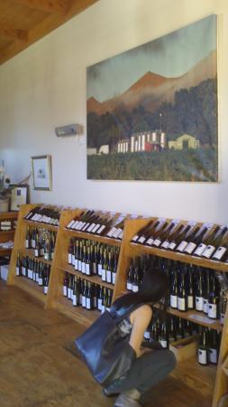 Waipara Springs Winery: 在选择葡萄酒