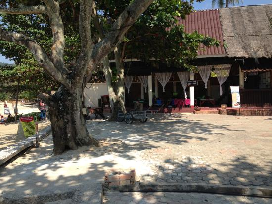 Holiday Villa: 靠近海滩做马杀鸡的小庭