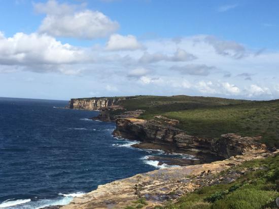 Sydney Coast Walks - Day Walks: 悉尼皇家国家公园
