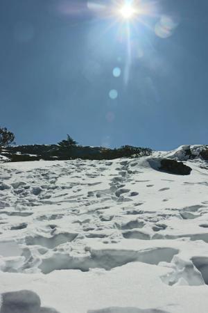 Jiaozi Snow Mountain : 轿子雪山
