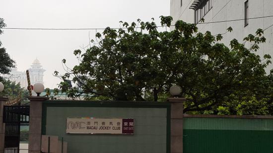 Hotel Taipa Square: 赛马会东门,正对酒店侧门