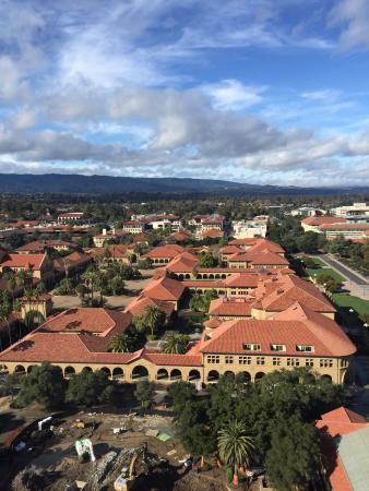 Palo Alto, CA: photo8.jpg