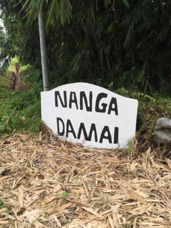 Nanga Damai Homestay Photo