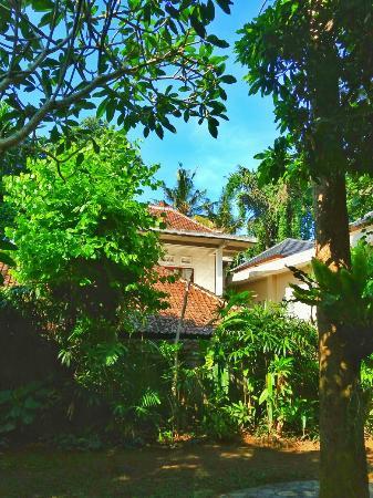 beautiful settings picture of alas petulu cottages ubud tripadvisor rh tripadvisor co uk