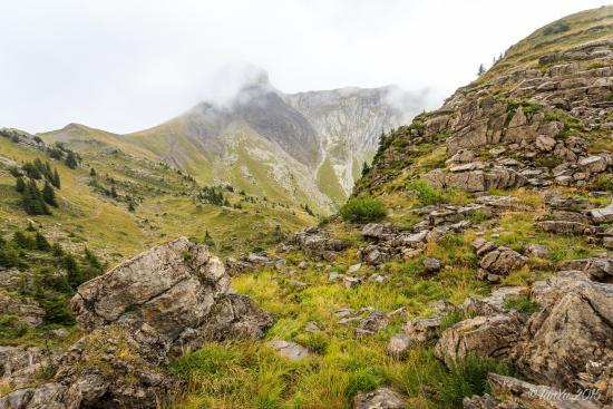 Grindelwald, Swiss: 空旷无人的山涧
