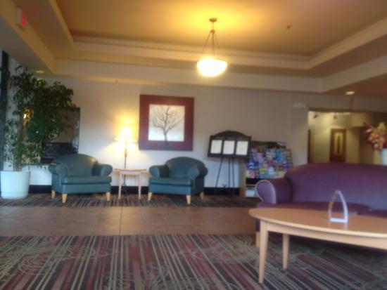 Quality Inn & Suites : 大堂