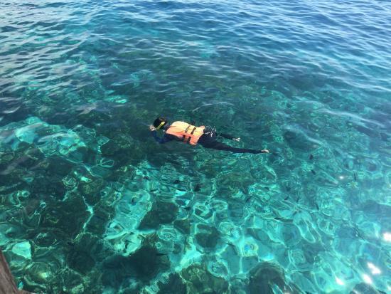 Dive The World: photo1.jpg