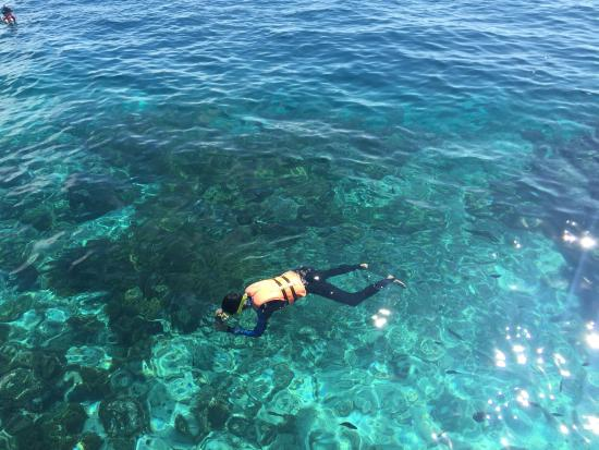 Dive The World: photo2.jpg