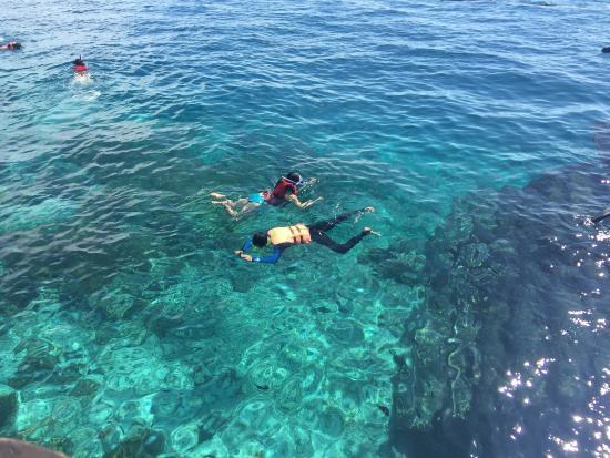 Dive The World: photo3.jpg