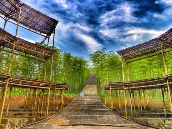 Tianxia Yinkeng Scenic Resort: photo5.jpg