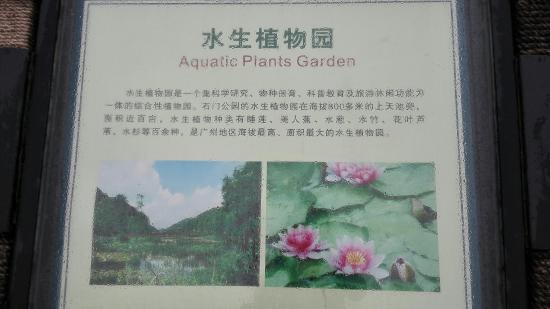 Conghua, China: IMG_20160430_122958_large.jpg
