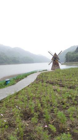 Conghua, China: IMG_20160430_125842_large.jpg