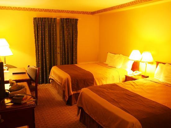 Travelodge Ottawa West: 双床房的床够大,两人睡可以