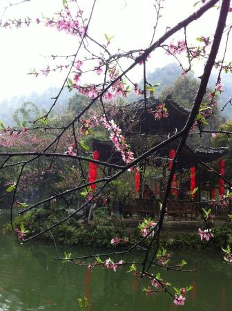 Youyang County, الصين: 世界有两个桃花源,一个在你心中,一个在酉阳