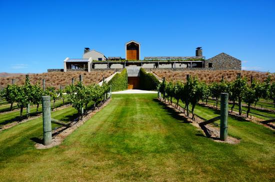 Μπλένχαϊμ, Νέα Ζηλανδία: Wither Hills