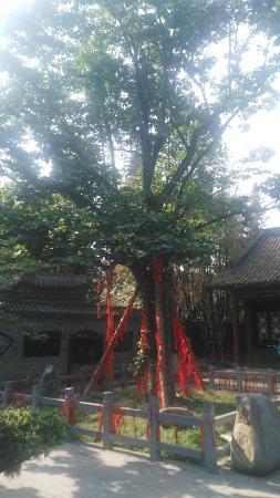 Hanzhong Temple of Marquis: IMG_20160501_161034_large.jpg