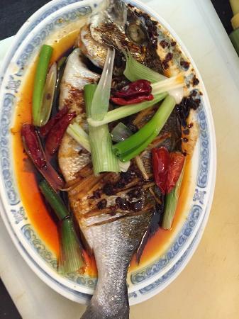 Donburi Asia Cuisine