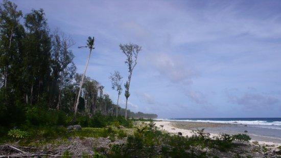 Palau: 1111