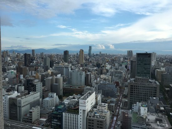 The St. Regis Osaka: 房间风景不错哦~
